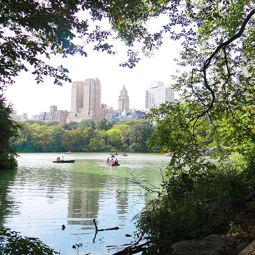 Central Park - Séjour Foot US à New-York